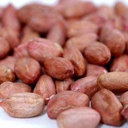 redskin-peanuts