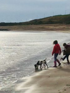 Children and a dog at beach